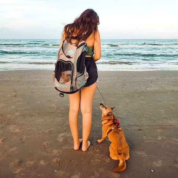 SHP_2-in-1_PetBackpack+Carrier_01