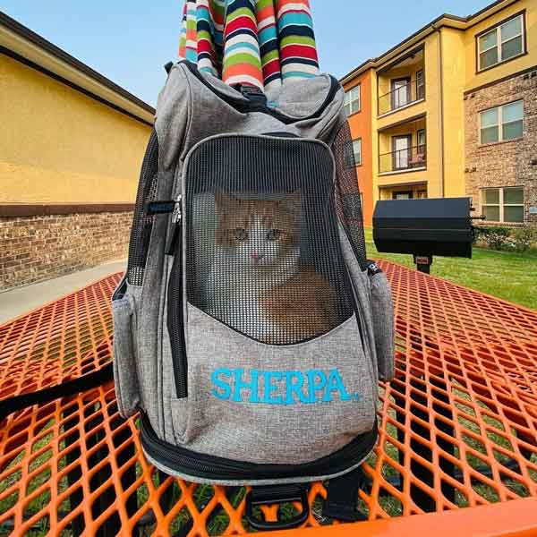 SHP_2-in-1_PetBackpack+Carrier_02