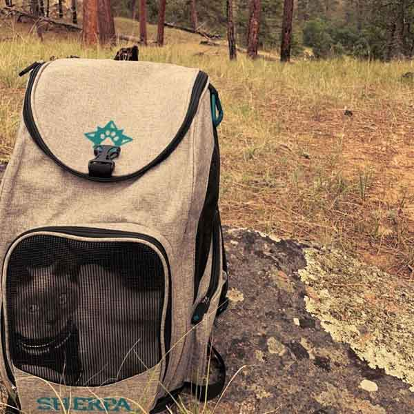 SHP_2-in-1_PetBackpack+Carrier_03
